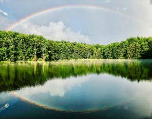 雨上がりの空にかかる虹